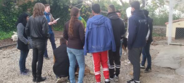 Teràpia assistida amb gossos a les llars de Sant Fost
