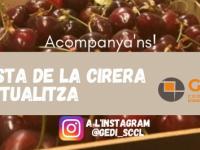 Divendres 26 de juny: La Festa de la Cirera a l'Instagram de Gedi!